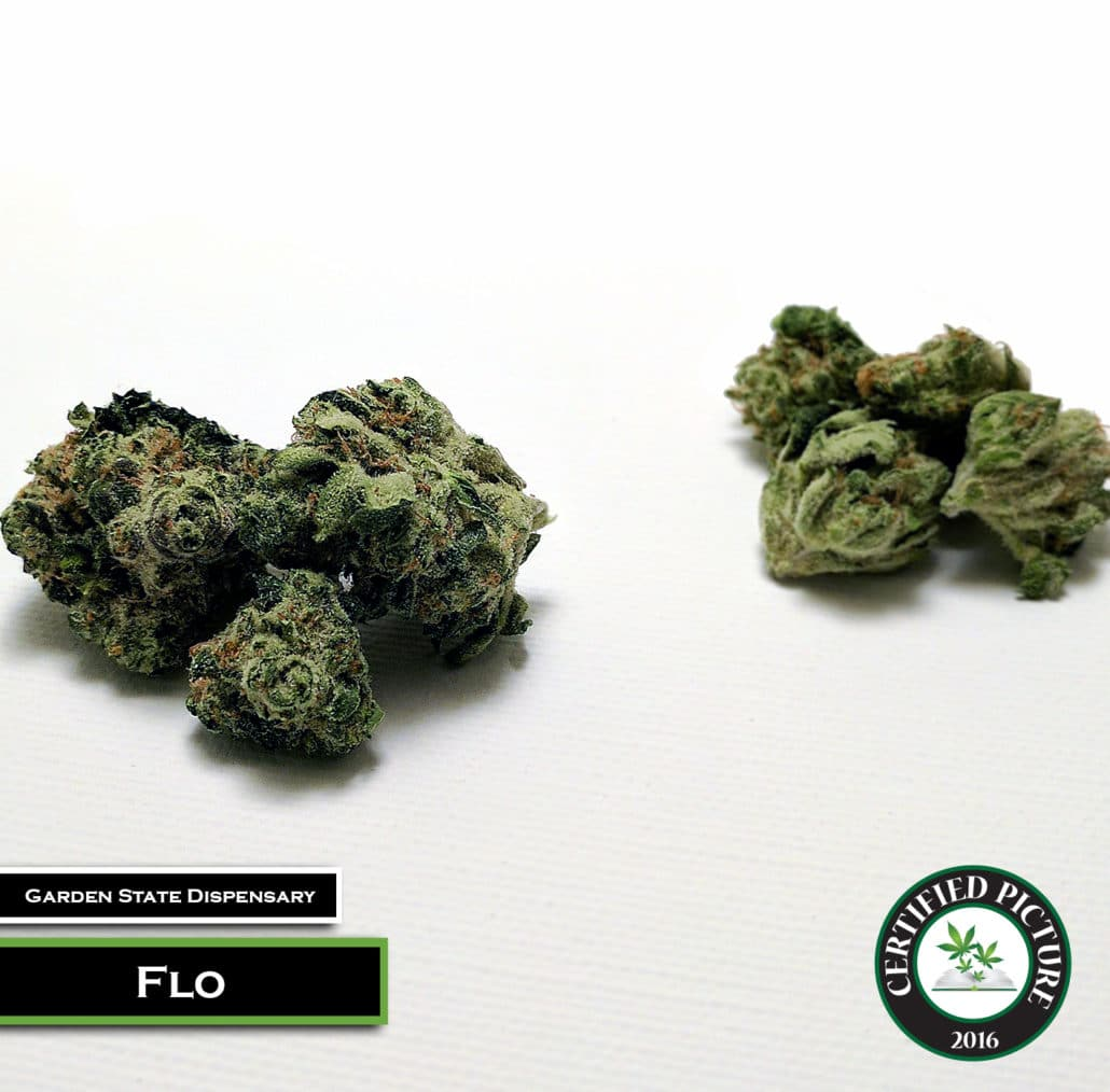 Flo Strain Information Mmp Directory