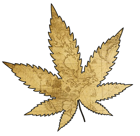 Cannabis Leaf with Map Outine