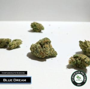 Blue Dream by Compassionate Sciences