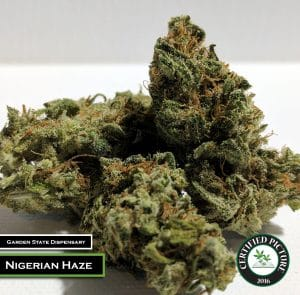 Nigerian Haze by Garden State Dispensary