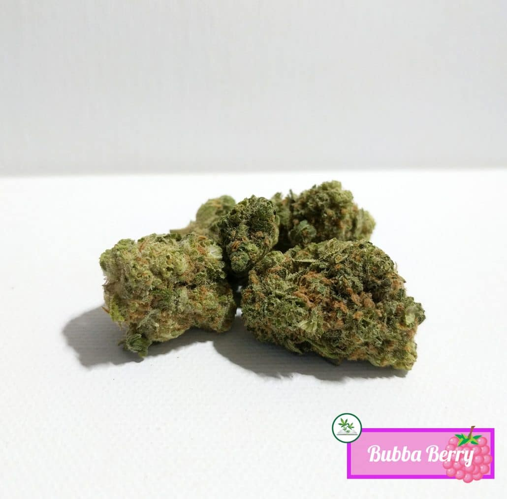 Bubba Berry Strain Information Mmp Directory