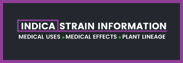 Indica Strain Information Picture
