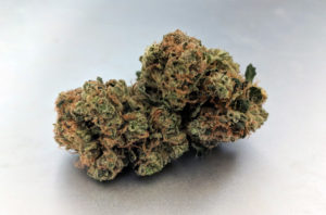 East Coast Sour Diesel Image 5