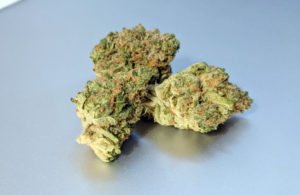 Platinum Girl Scout Cookies Strain Image 3